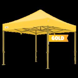 gold colour frame.jpg